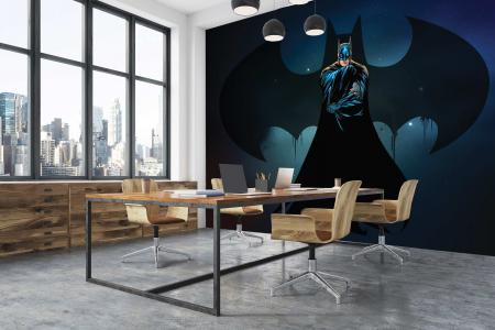 CODE WB2070 |BATMAN MURAL WALLPAPER
