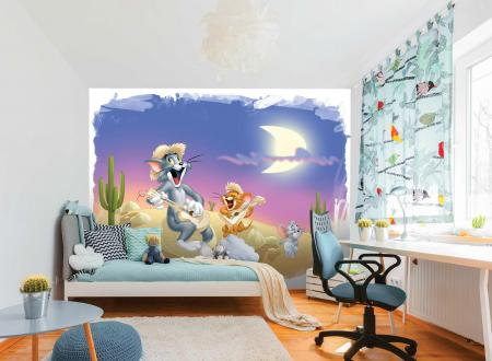CODE WB2171 | TOM AND JERRY MURAL WALLPAPER